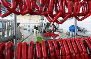 """Carnea procesata este cancerigena, iar carnea rosie este """"probabil"""" cancerigena, potrivit OMS . Sursa foto: www.who.int"""
