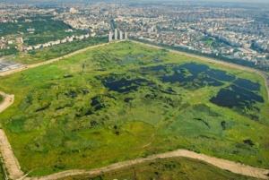 Romania exotica: Parcul Natural Vacaresti a fost declarat arie naturala protejata