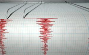 Despagubiri mai mici in caz de cutremur