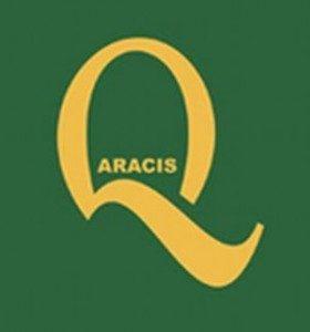 ARACIS pregateste internationalizarea universitatilor romanesti