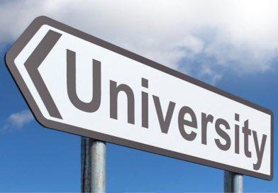 Universităţi din Suedia şi Irlanda îşi vor prezenta oferta educaţională în cadrul unor evenimente online